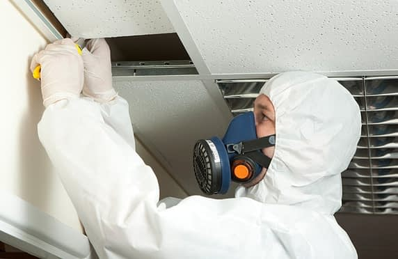 Steps In Asbestos Removal Process